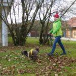 Mantrailing Freising - zufriedene Kundin