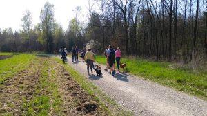 Hundeschule Freising - Socialwalks - Hundeerziehung und Spaziergang verbinden