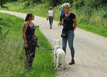 Hundetraining Freising Leinenführigkeit