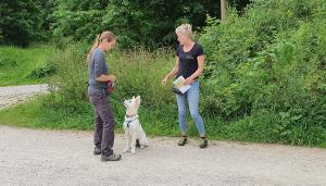 Hundeschule Moosburg - Gehorsamstraining